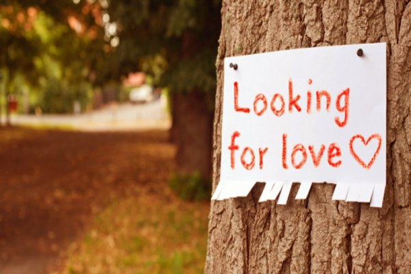 looking for love 2